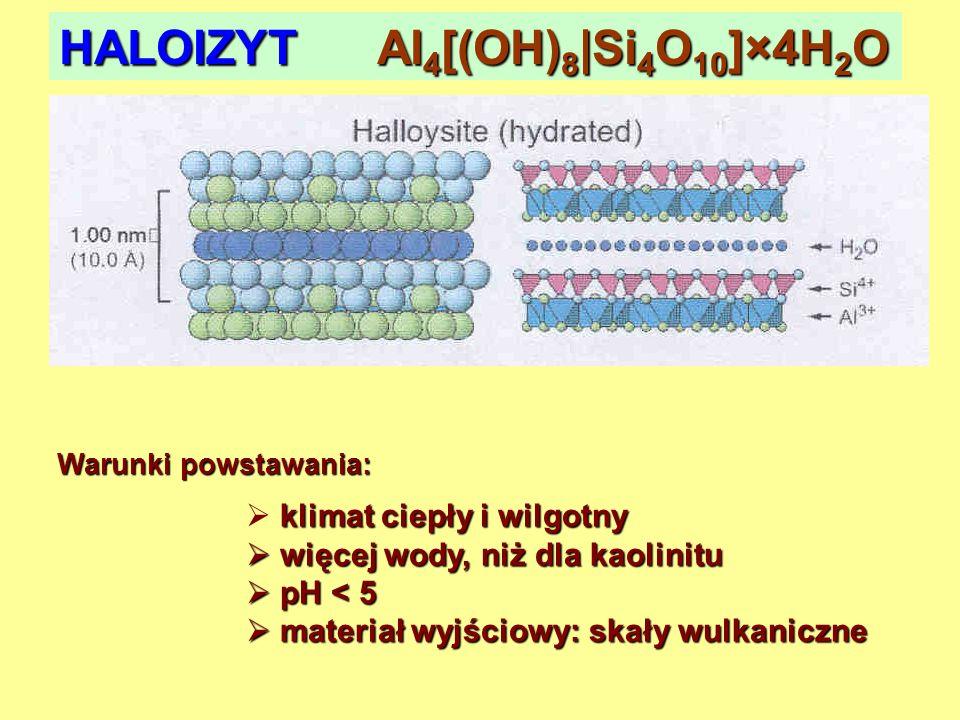 HALOIZYT Al4[(OH)8|Si4O10]×4H2O